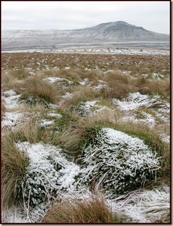 0305ingleborough
