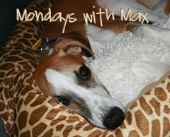Mondays with Max