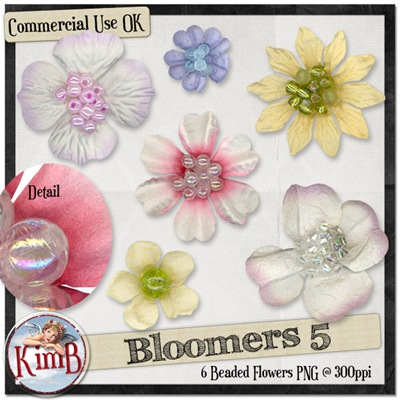 kb-bloomers5