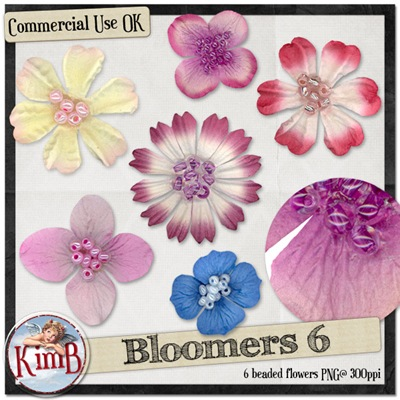 kb-bloomers6