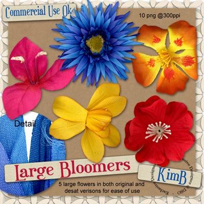 kb-largebloomers