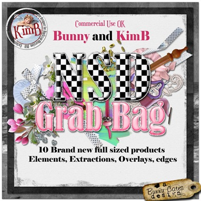 kb-BC-NSD_bag