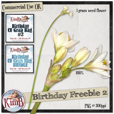 kb-birthdayfreebie2