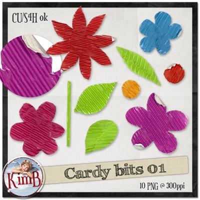 kb-cardybits