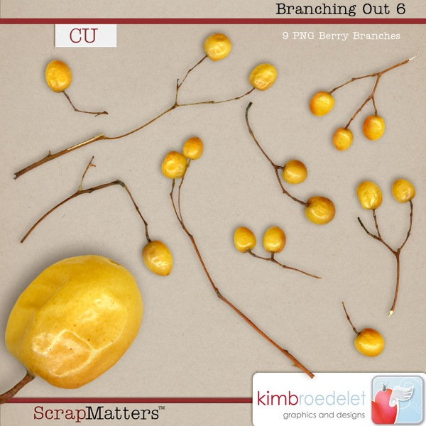 kb-branching-out6