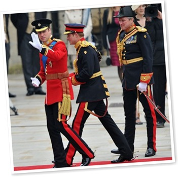 View Prince William and Harry