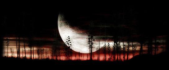 luna entre las pitas