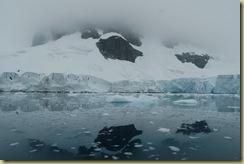 Paradise Harbour - glacier reflection