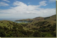 Coromandel Countryside and Bay
