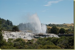 Pohutu and Prince of Wales Geysers
