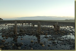 Remains of Coal Pier
