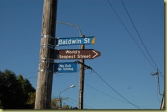 Baldwin Street Sign