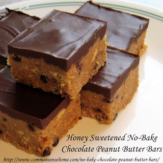 Honey Sweetened No-Bake Chocolate Peanut Butter Bars