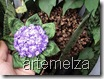 artemelza - fuxico hortencia