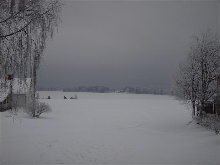 P1164015