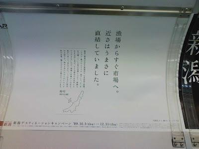 新潟ブランディング広告,ハセガワアツシのエゾノギシギシ用