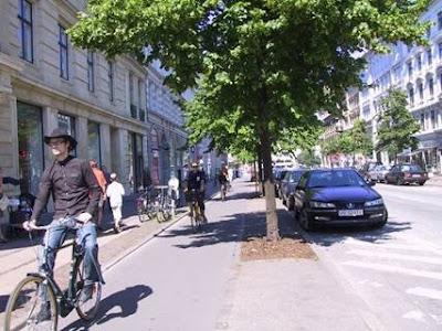 圖9-6b 自行車道在停車格與人行道之間,在固定距離數個停車格間植樹。