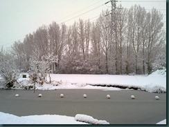 snow day 039