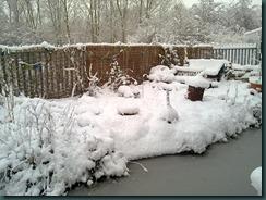 snow day 036