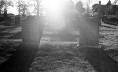 The-Graveyard---Film