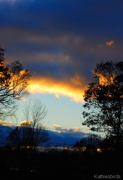 11. sunset