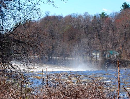 18. Androscoggin River 4-29-11