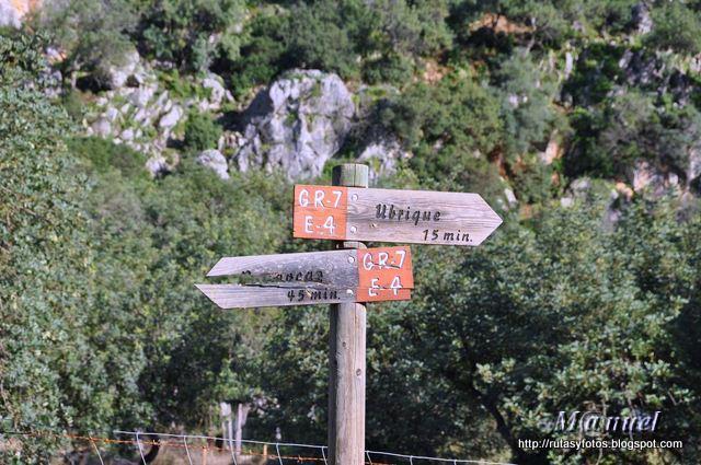 El Cintillo - Cerro de Los Batanes - Ubrique - Calzada Romana