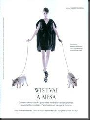 wish report[1]