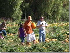 pumpkin patch 033