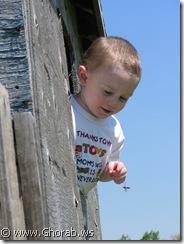 طفل يلهو مع نحلة