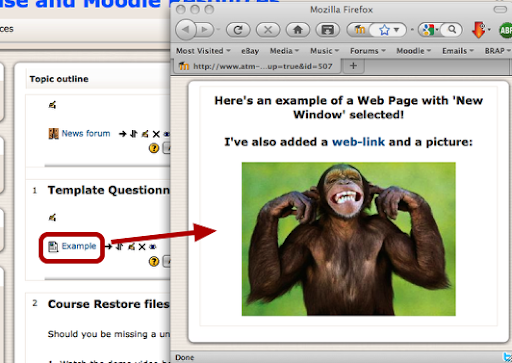 Web_Page_pop-up_example.png