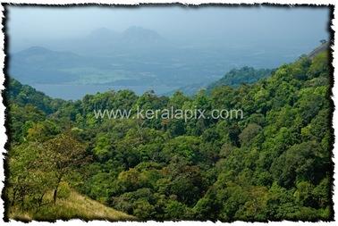 NLPY_005_www.keralapix.com_DSC0050