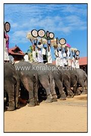 TPRA_027_DSC0154_www.keralapix.com_kerala