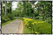 NLPY_014_www.keralapix.com_DSC0054