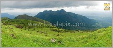 PMDY_016_keralapix.com_ponmudi_keral
