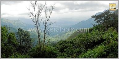 PMDY_026_keralapix.com_ponmudi_keral