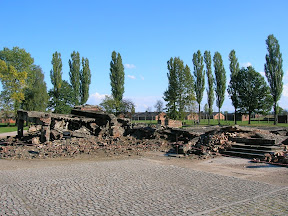 146 - Auschwitz II - Birkenau, crematorio 2.JPG