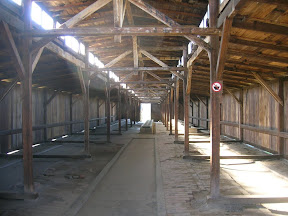 135 - Auschwitz II - Birkenau, letrinas.JPG