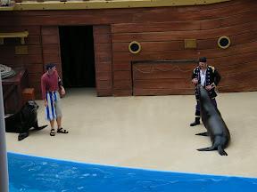 182 - Espectáculo de los leones marinos.JPG