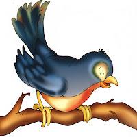 Aves (69).jpg
