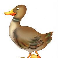 Aves (82).jpg