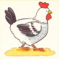 Aves (57).jpg