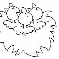 Aves (45).jpg