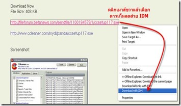 โปรแกรม internet download manager