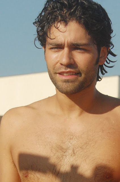 portrait of shirtless and hairy chested adrian grenier