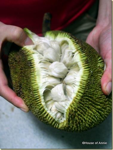 opening a buah tarap