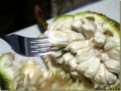buah tarap fruit aril