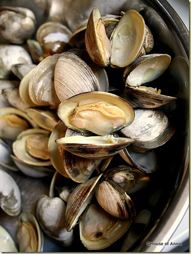 Steamed Clams for Cioppino