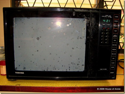 Toshiba combination microwave convection oven