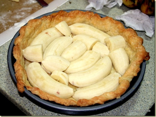 banana cream pie bananas